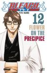 Bleach (manga) volume / tome 12