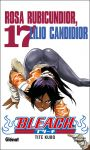 Bleach (manga) volume / tome 17